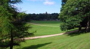 Avenham Miller Parks